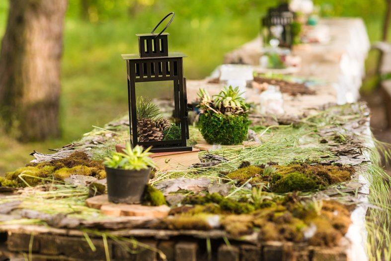 Mech a šišky na svatební hostině