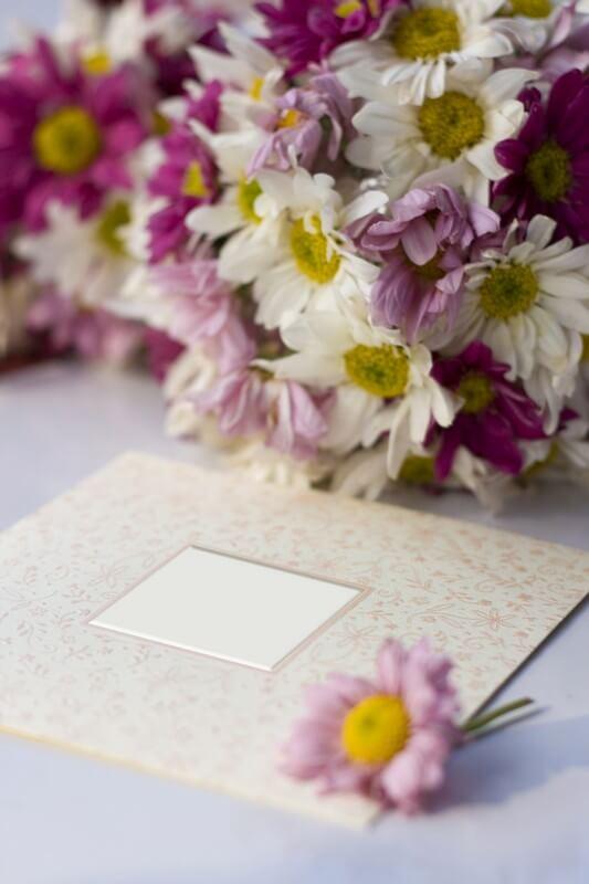 Online svatební oznámení