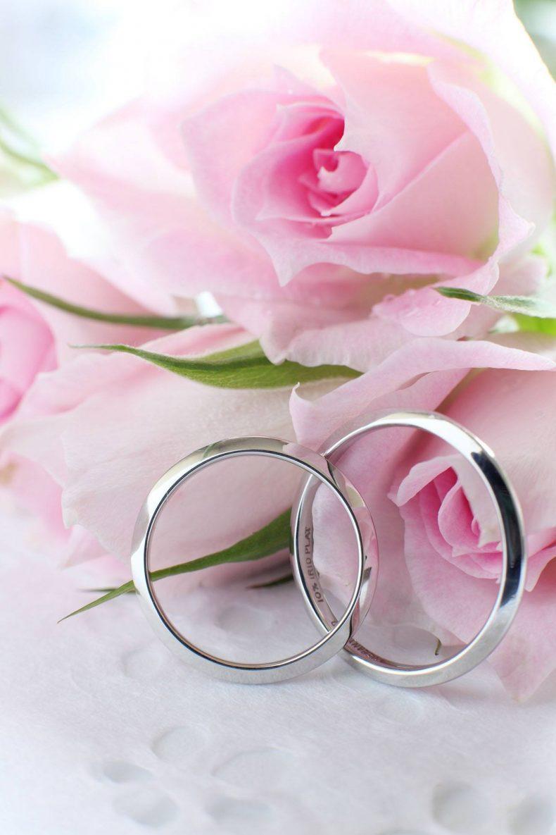 Stříbrné prstýnky a světle růžové růže