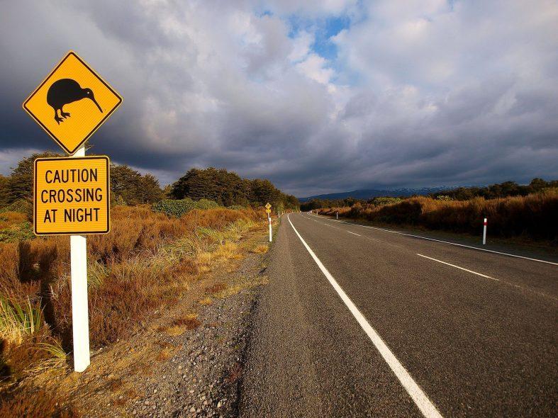 Při své svatební cestě po Novém Zélandu můžete narazit na zajímavé značky
