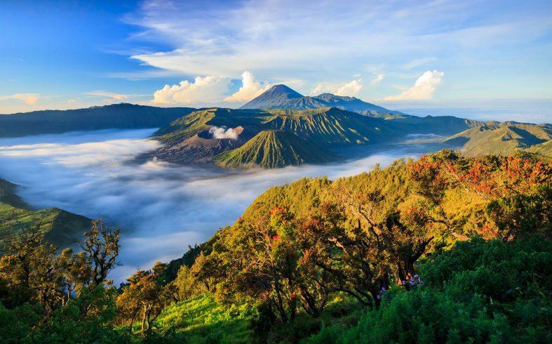 Národní park Semeru National park s vulkánem Semeru