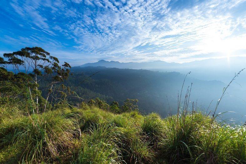 Výhled na krajinu u vesničky Ella, Srí Lanka