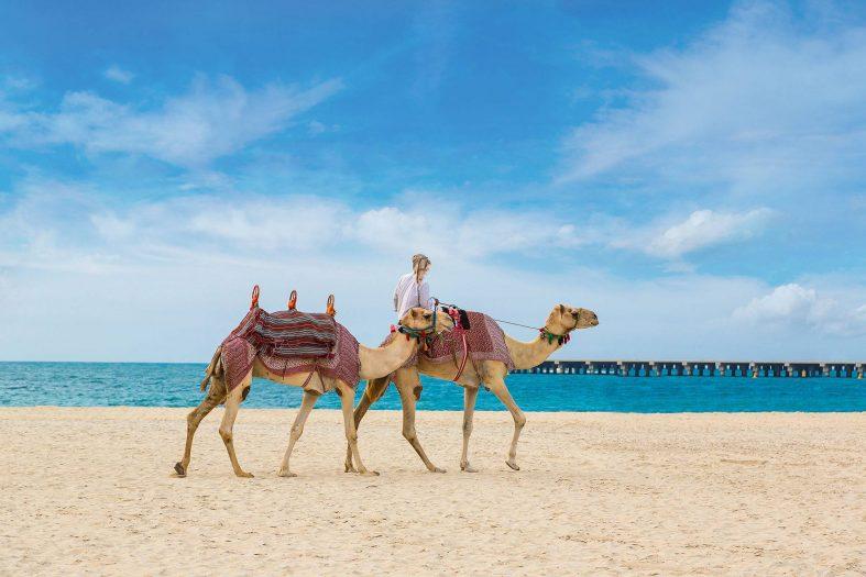 Vyjížďka na velbloudech Dubaj